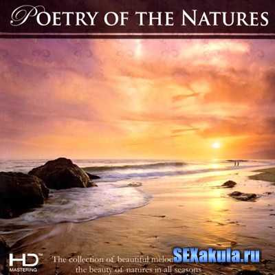 Blue Seas Grand Orchestra - Poetry of The Natures (2013)